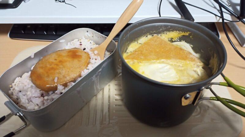 今日の夕食「湯煎で食べられるチキンハンバーグとニンジン、玉ねぎ、たまごを追加したレトルトうどん」